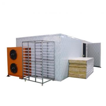 Industrial Size Electric Mushroom Meat Food Dehydrator