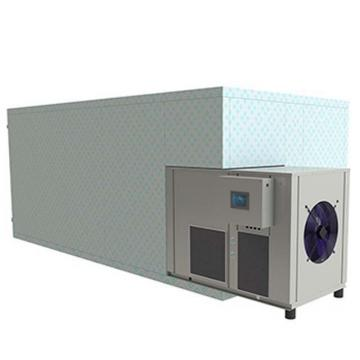 Microwave Tunnel Fruit and Vegetable Dryer