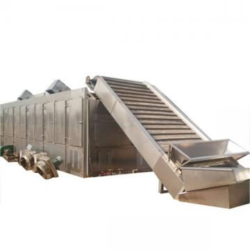 Industrial Stainless Steel Fruit Vegetable Mesh Belt Dryer Machine